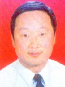 张子宇,武术裁判,许昌市武术协会主席