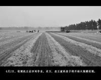 2012年麦收